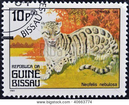 GUINEA BISSAU - CIRCA 1984: A stamp printed in Guinea Bissau shows Neofelis nebulosa