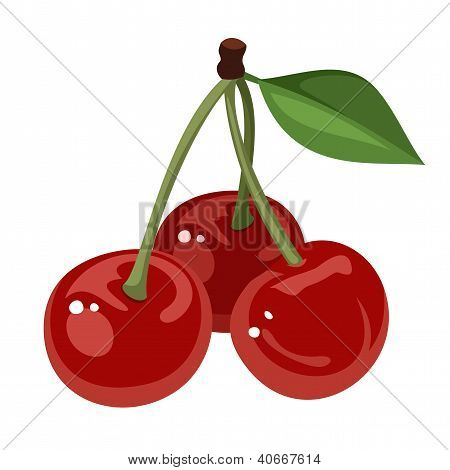 Three cherries. Vector illustration.