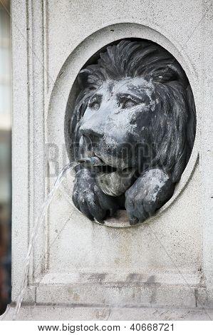 Lion Fountain