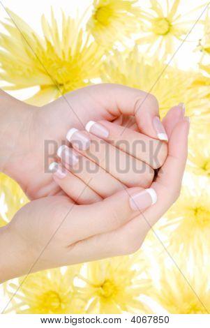 Wellbeing Human Hand