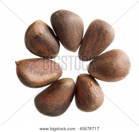 Pine Nuts In Shape Of Flower