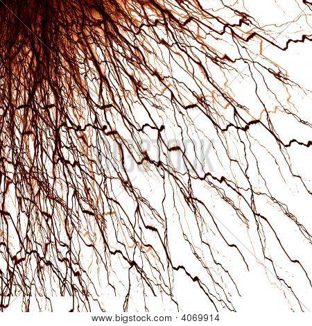 menschlichen Nervensystem