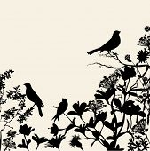Floral Silhouettes Background Corner - birds perched on flowers and plants in black, against a neutr