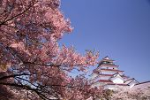 stock photo of fukushima  - Aizuwakamatsu Castle and cherry blossom in Fukushima Japan - JPG