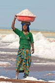 Indian Female Workers On Salt Farm