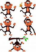 pic of chimp  - Vector illustration of funny monkey cartoon set isolated on white - JPG