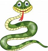stock photo of anaconda  - Vector illustration of funny snake cartoon isolated on white - JPG