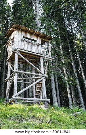 Bird Watching Tower In The Forest