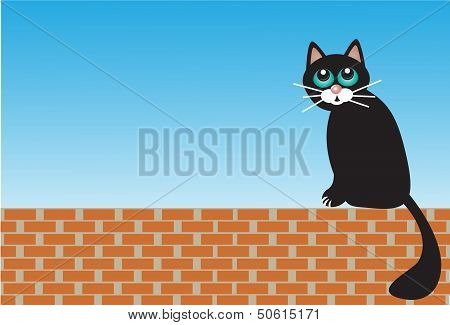sad cat sitting on bricks