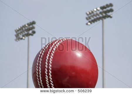 Floodlit Cricket