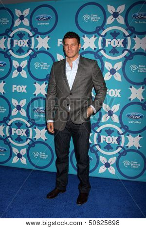 LOS ANGELES - SEP 9:  David Boreanaz at the FOX Fall Eco-Casino Party at The Bungalow on September 9, 2013 in Santa Monica, CA