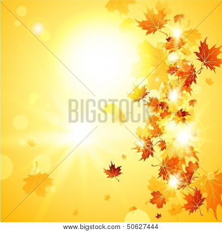 Beautiful fall background  with falling leaves with place for text