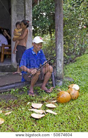 Man Splitting Coconuts