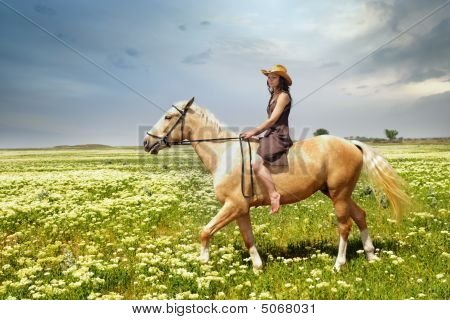 Tame Of Horse