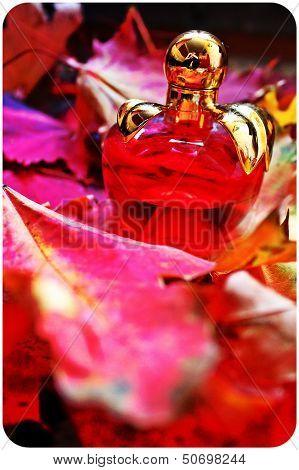 fragrance of autumn