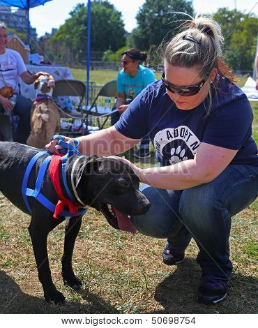 ADOPT NY Hosts Photo Adoption Event in Brooklyn