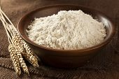 picture of whole-wheat  - Organic Whole Wheat Flour Ready For Baking - JPG