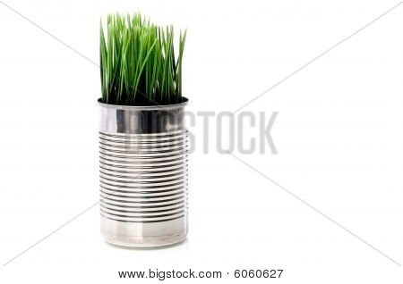 Horizontal Image Of Green Grass Growing From A Recyled Aluminim Can On White