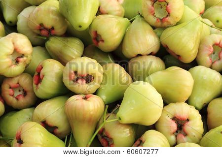 Rose Apples Or Green Chomphu