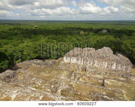 Temple Ruin At Calakmul