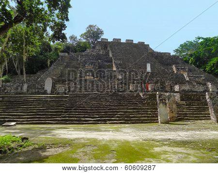 Temple Detail At Calakmul