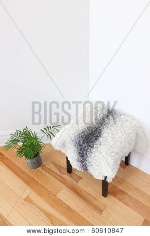 Green Plant And Stool Covered With Sheepskin