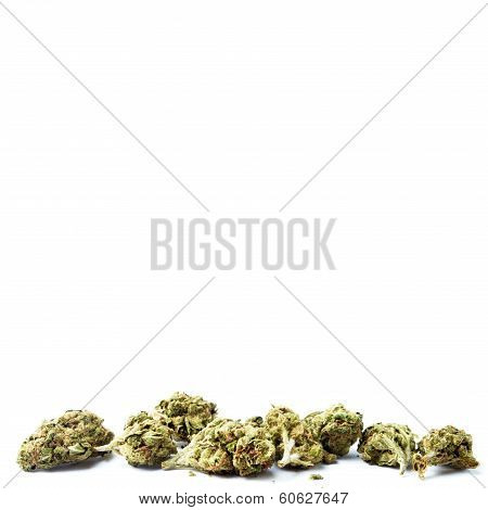 Marijuana on white background, Legalization