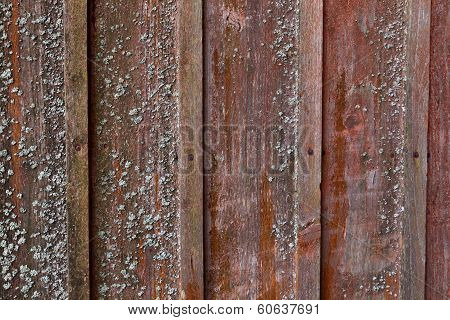 Vertical Red Plank Wall With Mold