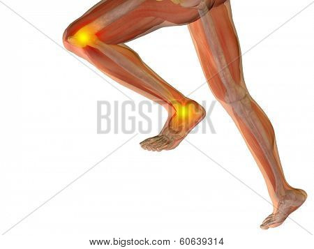 Conceptual 3D human man anatomy or health design, joint or articular pain, ache or injury isolated on white background