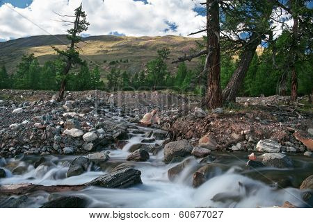 mountain river in Altay republic in Russia