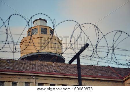Barbed wire around prison walls
