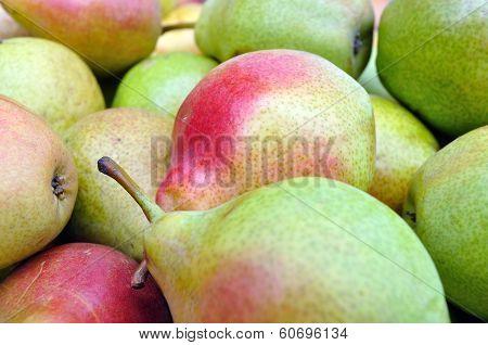 Close-up Of Ripe Organic Pears