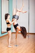 picture of pole dancer  - Couple of beautiful young pole dancers assisting each other during practice - JPG