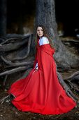 stock photo of cloak  - beautiful woman with red cloak posing in the woods - JPG