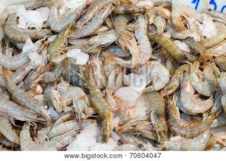 Fresh shrimps at a market