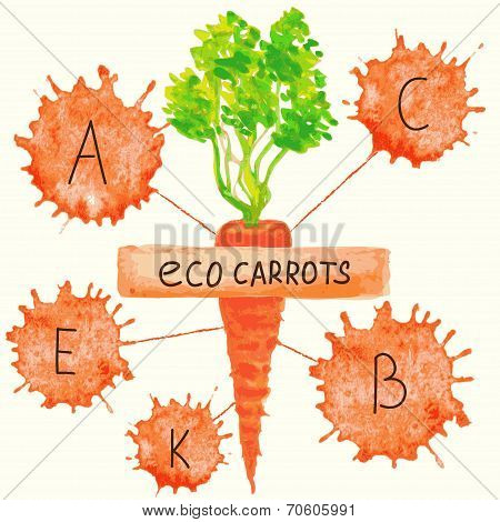 The content of vitamins in carrots.