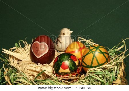 Bird in easter eggs nest