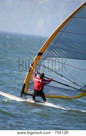 Windsurfer In San Fran Bay PCT0240