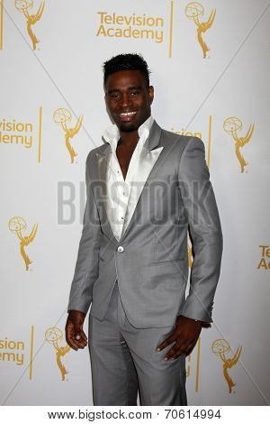 LOS ANGELES - AUG 22:  Keoikantse Motsepe of Dancing With The Stars at the Television Academy�¢??s Producers Peer Group Reception at London Hotel on August 22, 2014 in West Hollywood, CA