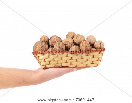 Hand holdind basket with walnuts.