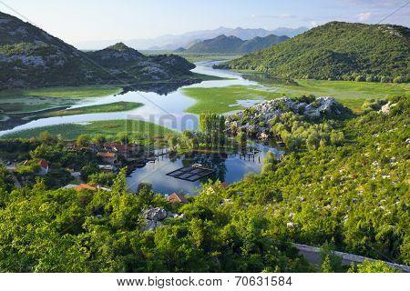 Karuc Bay in Lake Skadar National Park, Montenegro