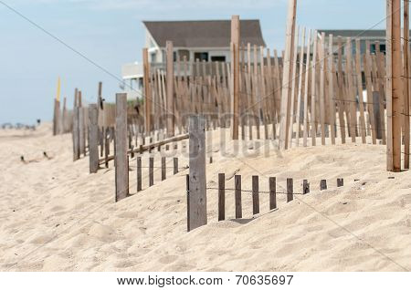 Dunes Fencing Along Outer Banks Of North Carolina In Cape Hatteras National Seashore