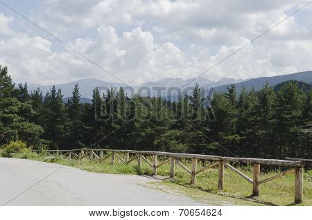 Way through green forest and high peaks