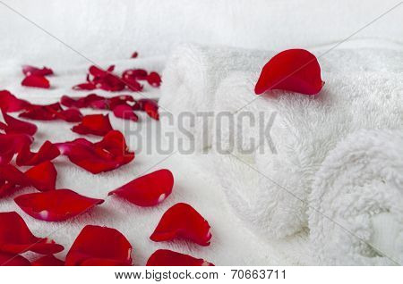 Spa Composition - Rolled Towels And Rose Petals