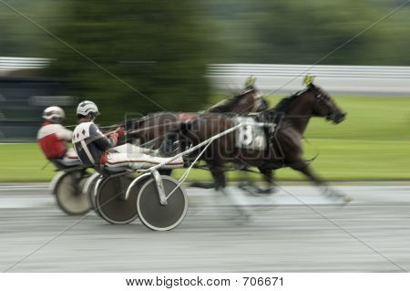 Harness Race Close Call
