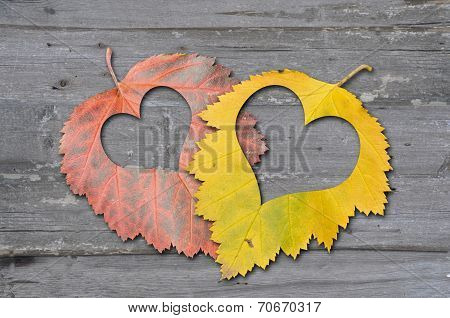 Autumn Leaves With Heat