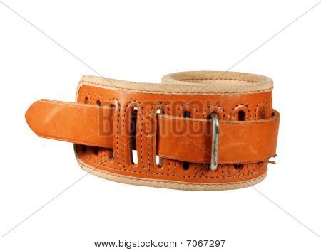 Padded Wrist Restraint Isolated With Path