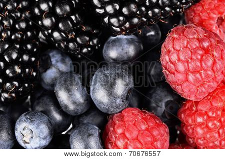 Background Of Sorted Fresh Various Berries