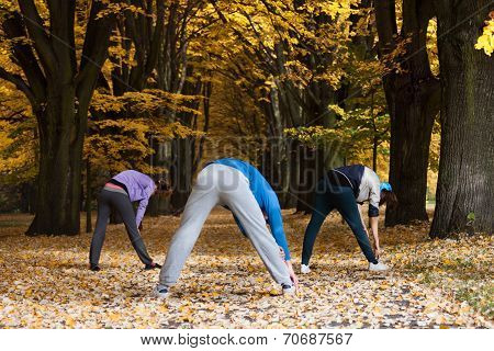 Stretching In Park Alley