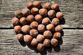 picture of hazelnut tree  - Several hazelnuts in shell on a wooden background top view